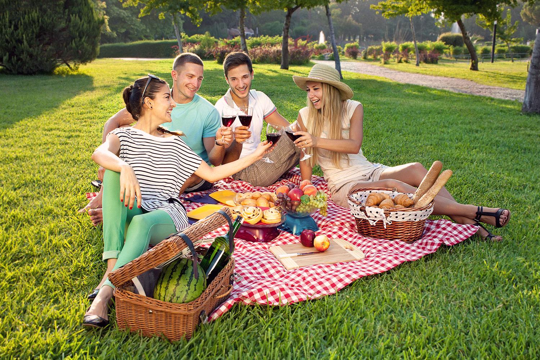 TEMP-picnic