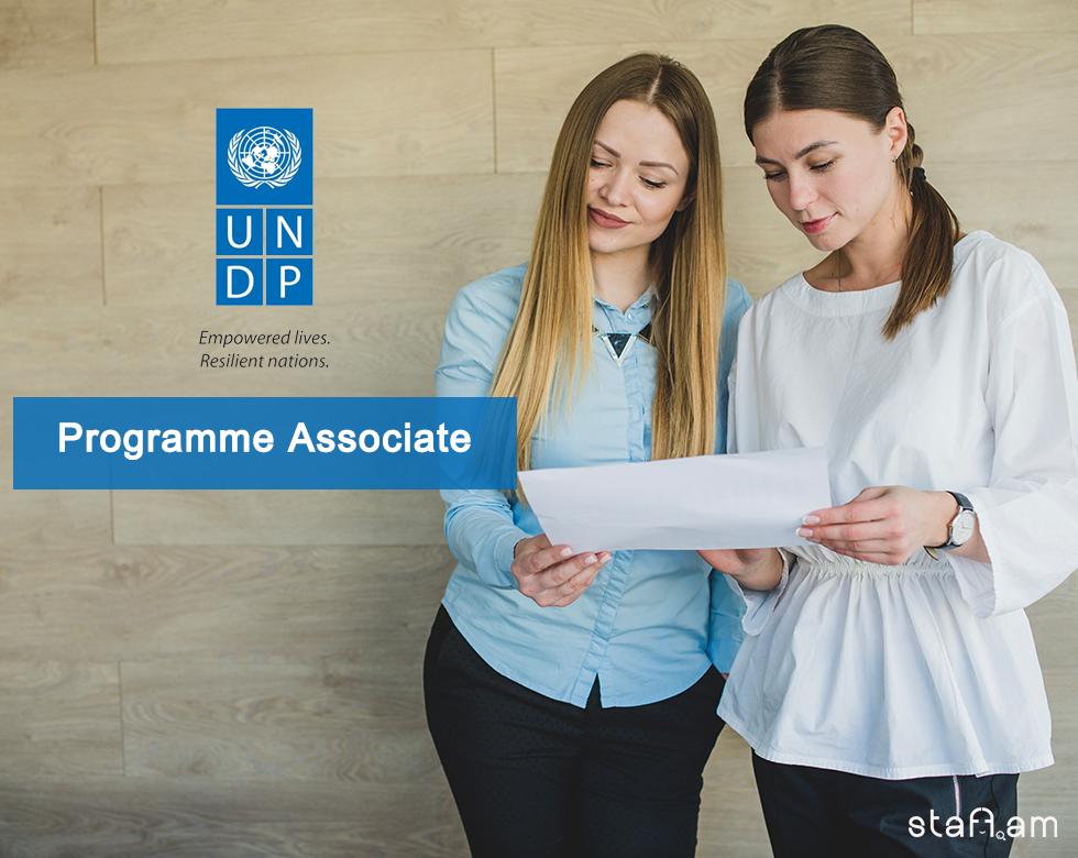 UNDP_ass